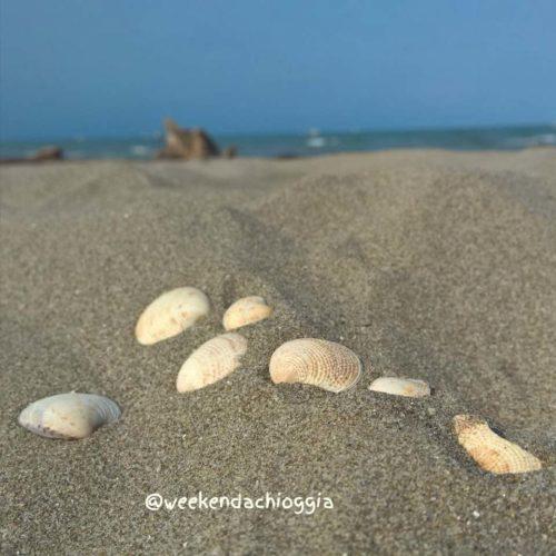 foto sulla spiaggia